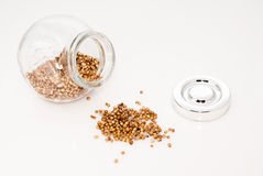 Glass jar full of coriander seeds Royalty Free Stock Images