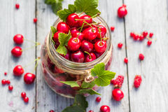 Glass jar full fruits cherries currants Royalty Free Stock Images