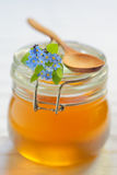 Glass jar full of honey Royalty Free Stock Photography
