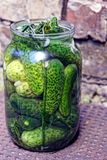 Green cucumbers and seasoning in a glass jar on a brown table Stock Photography