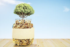 Glass jar with gold coins and a tree Royalty Free Stock Images
