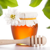 Glass jar with honey isolated Royalty Free Stock Images