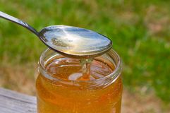 Glass jar with honey and a metal spoon. Royalty Free Stock Photos