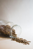 Glass jar with linsen seeds. Falling out Royalty Free Stock Photo
