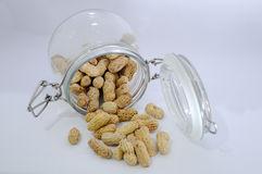 Glass jar with lots of peanuts on a white background Stock Image