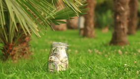 A glass jar with paper money dollars against a palm tree background. Accumulate savings on leave stock footage