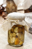 Glass jar of pickled mushrooms Stock Photos