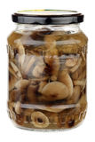 Pickled mushrooms Royalty Free Stock Image