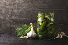 Glass jar of pickles with dill and garlic Royalty Free Stock Photos