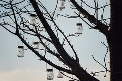 A glass jar with a small light bulb decorated on the tree, used to decorate at night