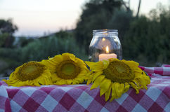 Glass jar and sunflowers Stock Images
