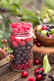 Glass jar of various berries Stock Image