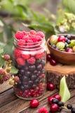Glass jar of various berries Stock Image