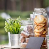 Glass jars with cookies and muffins, green seedlings in metal decorative pails royalty free stock photography