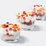 Glass jars with cream cheese and sour cream, cranberries and can Royalty Free Stock Photo