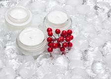 Glass jars of cream with red berries bunch surrounded by ice cub. Glass jars of cream with bunch of red berries surrounded by ice cubes. Cooling effect royalty free stock photography