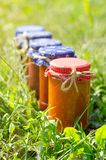 Glass jars with different kinds of jam Royalty Free Stock Photography