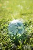 Glass jordklot på grönt gräs Royaltyfri Fotografi