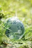 Glass jordklot på grönt gräs Arkivbilder