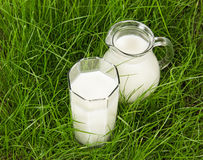 Glass and jug with fresh milk on green grass Stock Photography