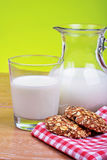 Glass jug and glass with milk Royalty Free Stock Photos