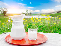 Glass jug with milk and a glass on the grass against a background of picturesque green meadows with flowers. Royalty Free Stock Image