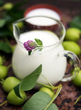 Glass Jug of the milk with pink clover. Close up Stock Image