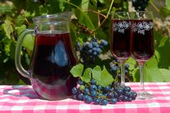 Glass jug with red wine and wine glass on the table. Wine in a carafe with ripe grapes of a vineyard on background stock images