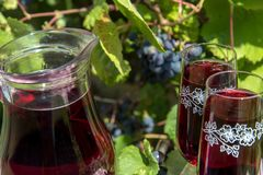 Glass jug with red wine and wine glass. Stock Photos