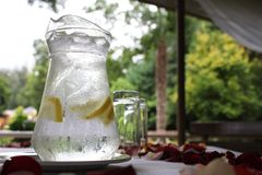 Glass Jug Water. A large jug of cold water with ice and lemon slices on a plate with rose petals strewn around and glasses in the background. Condensation stock image