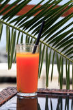 Glass of juice Stock Photography