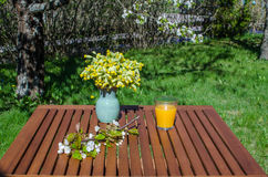 Glass of juice on decorated garden table Royalty Free Stock Images