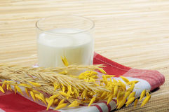 Glass of kefir and wheat ears Stock Photography