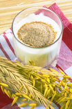 Glass of kefir and wheat ears Stock Images