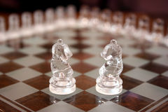 Glass knight chess pieces. Two glass knight chess pieces on a glossy game board Stock Photos