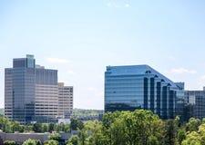 Glass kontorsbyggnader som stiger från träd Royaltyfri Bild