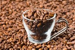 Glass kopp som fylls med kaffebönor Royaltyfri Foto