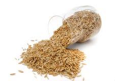 Glass krus med oats arkivbild