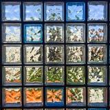 Glass kvarter som inramas i betong Arkivbild