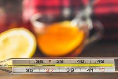 Glass kvicksilvertermometer med en hög temperatur av 37 5 mot bakgrunden av mediciner, citron, te, folk boter, minnestavlor, Arkivbilder