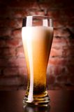 Glass of lager Stock Photography
