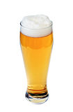 Glass of lager beer Royalty Free Stock Photos