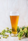 Glass of lager beer Stock Photo