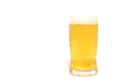 Glass of Lager Beer on white background Stock Image