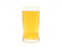 Glass of Lager Beer on white background Stock Images