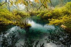 Glass Lake in Jiuzhaigou Valley. Glass Lakes in Jiuzhaigou Valley with Cloud reflected in water Royalty Free Stock Image