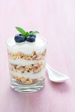 Glass of layered yoghurt dessert. A glass of layered yoghurt, cereals, blueberry and mint on a pink background stock image