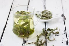 A glass of lemon balm tea. On a white background stock image