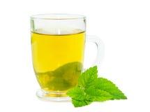 Glass of lemon balm tisane. Glass of herbal lemon balm tisane or tea with fresh green leaves on a white studio bacground Royalty Free Stock Photos