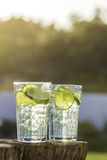 A glass of Lemon Lime soda filled with ice cubes Royalty Free Stock Photo